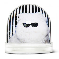 Boule de neige Karl Cat