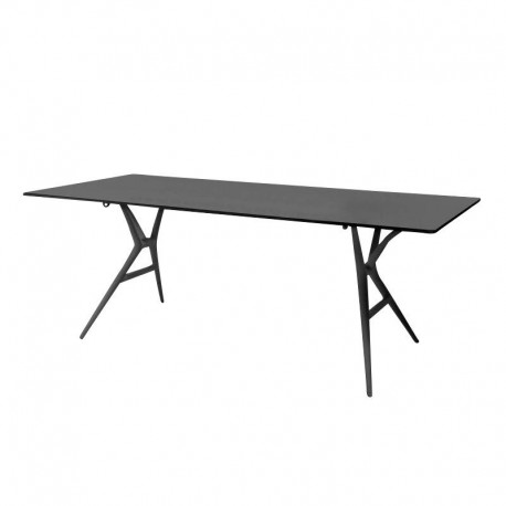 Spoon Table / largeur 200 cm